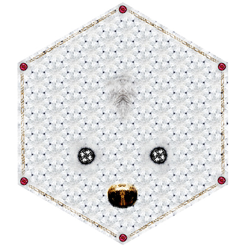 moooi carpets crystal teddy
