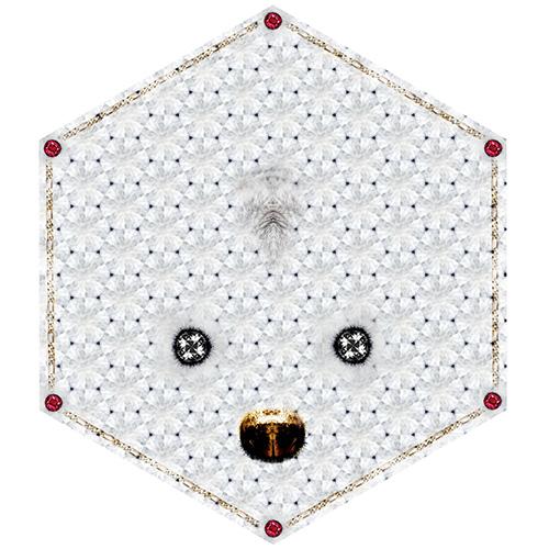 moooi carpets crystal teddy wol