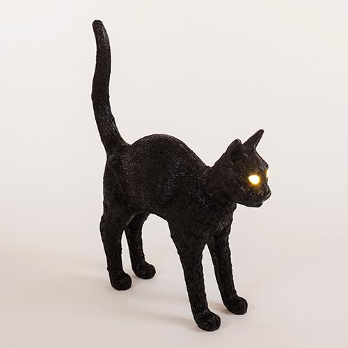 seletti cat
