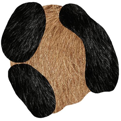 moooi carpets bearded leap