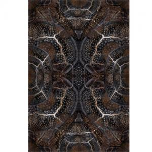 moooi carpets blooming seadragon