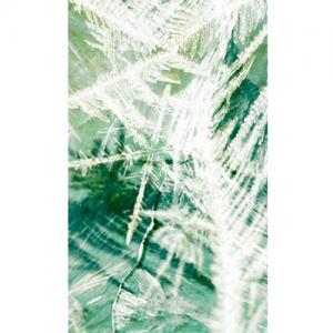 moooi carpets frozen